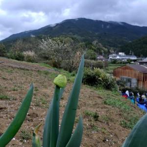 倉橋神社から音羽山を