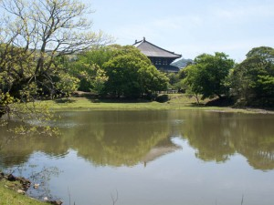 大仏池から大講堂を望む